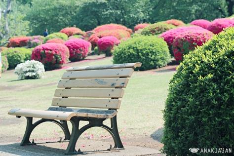 English Garden area