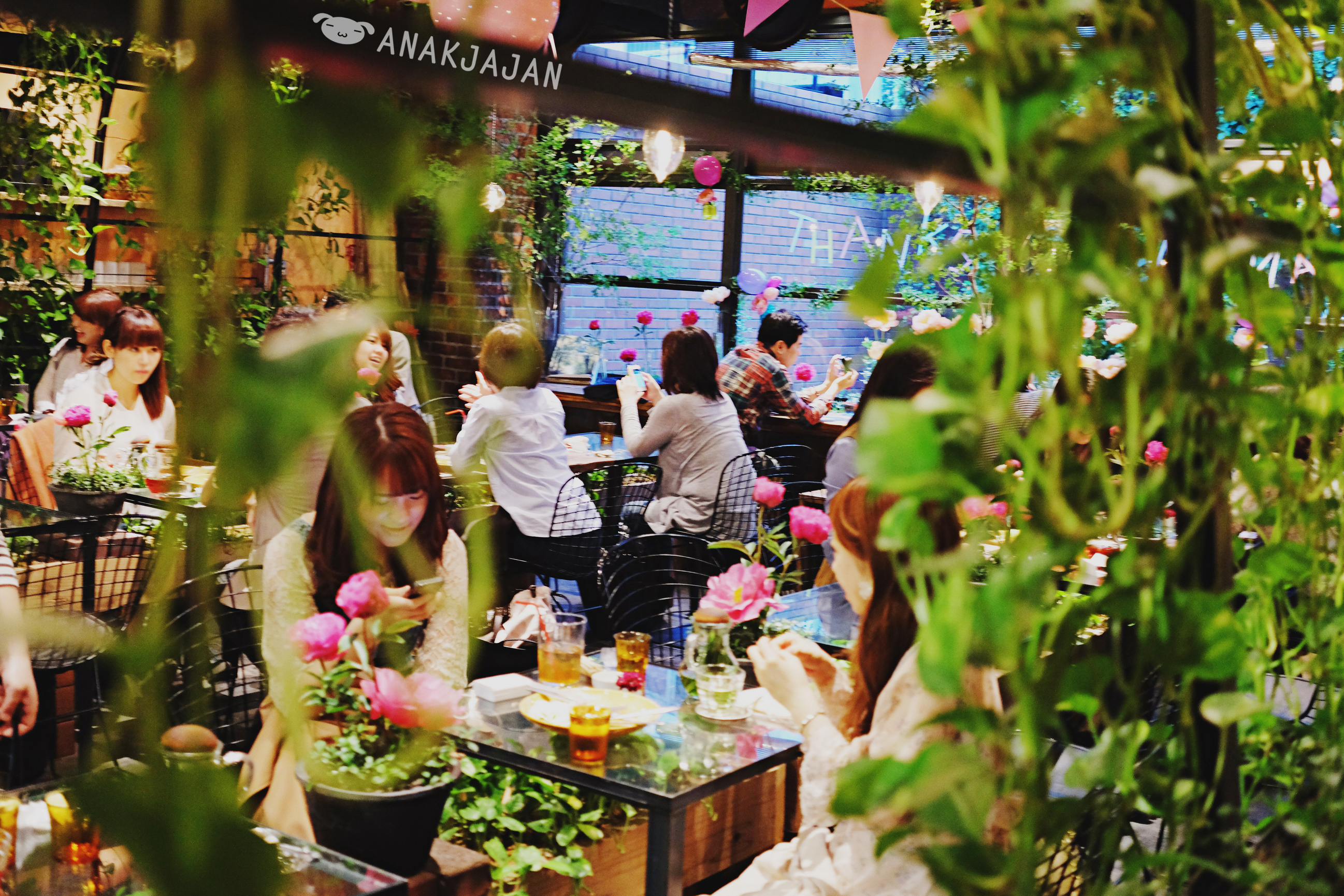 Japan Aoyama Flower Market Tea House Anakjajan Com