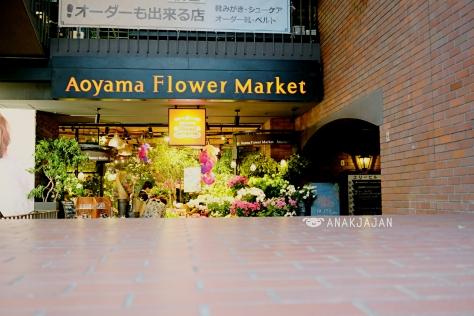 aoyama flower market