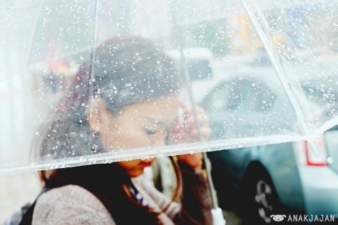 Photogenic transparent umbrella
