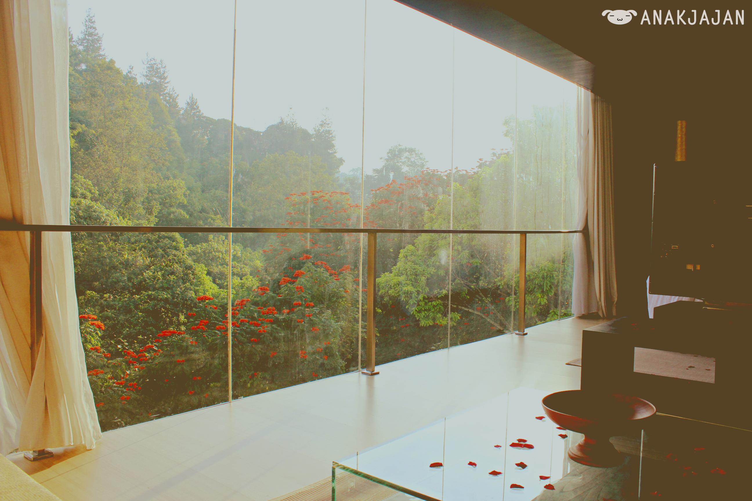 Padma hotel bandung wedding proposal diary anakjajan padma junglespirit Images