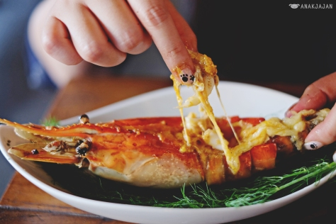 Cheese Baked BIG Prawn IDR 80k