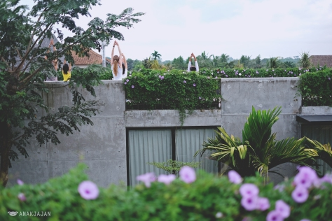 Rooftop Yoga facing Ubud Forest