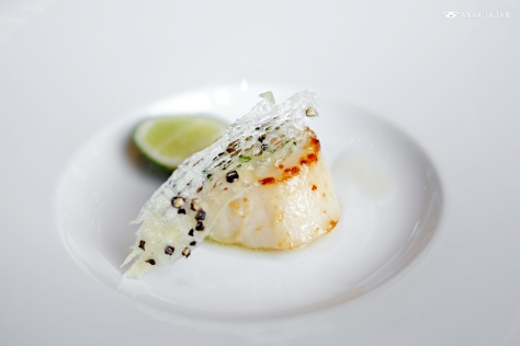 Seared Scallop
