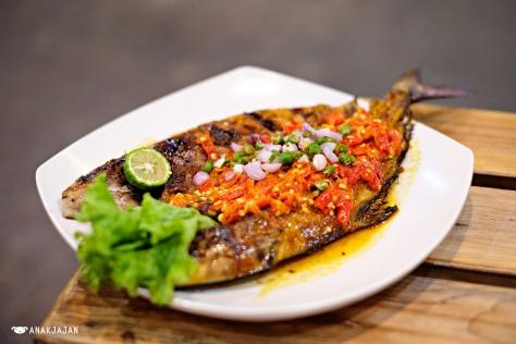 Grilled Ikan Aji-Aji - Dapur Pangkep 33