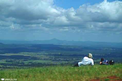 Mt. Tamborine area