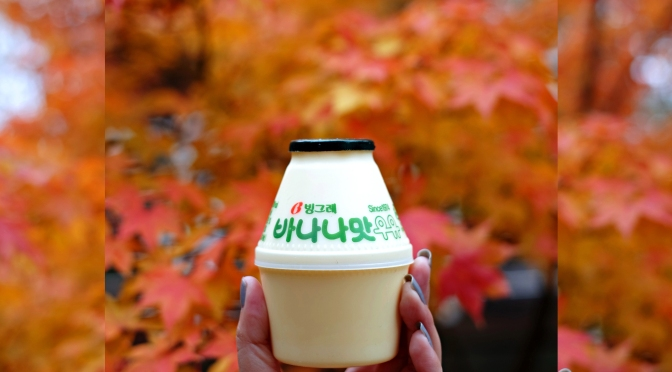 [KOREA] AUTUMN IN SEOUL – Places to Visit Travel Guide