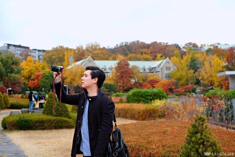 korea autumn