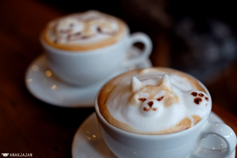 Cappuccino JPY 600 + 3D Latte Art JPY 400