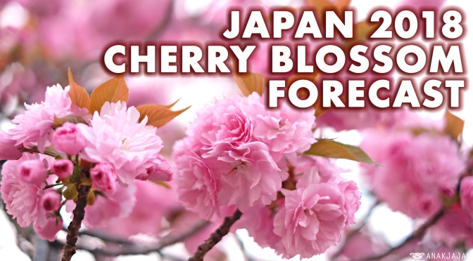 [Japan] 2018 CHERRY BLOSSOM (SAKURA) SCHEDULE FORECAST