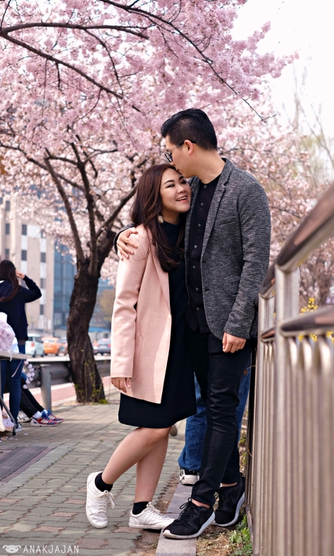 Cherryblossoms dating asian