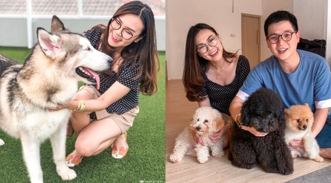 DOG MINISTRY (Dog Cafe, Hotel, Grooming, etc) – PLUIT, Jakarta